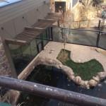 Custom Glass Work in Colorado Springs Zoo
